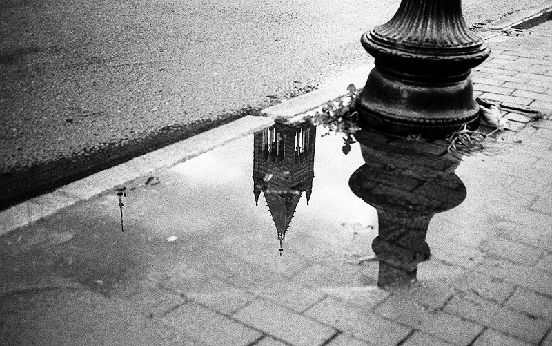 Puddle reflection